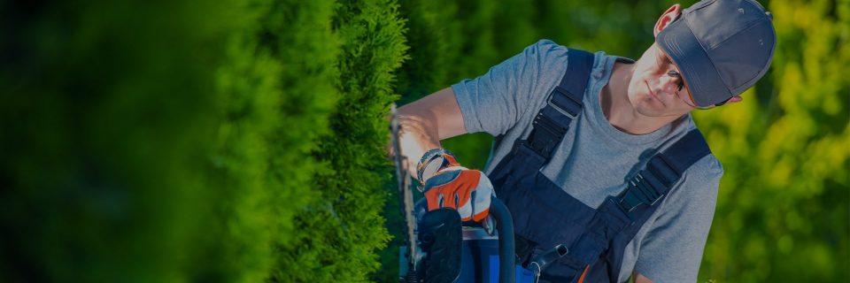 Profi kertépítés Budapesten és környékén