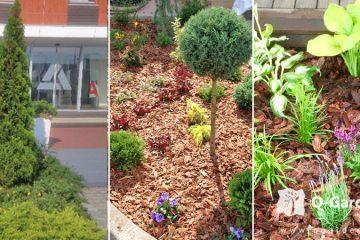 Ipari parkok zöld területeinek kialakítása - kerttervezés Kertépítés Qgardens • Kertépítés • Főoldal iparipark kertepites