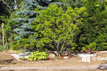 Kertépítés csepelen Kertépítés Qgardens • Kertépítés • Főoldal kertepites csepel 03